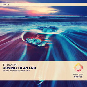 T DAVIDS - Coming To An End