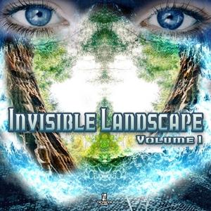 VARIOUS - Invisible Landscape Vol 1