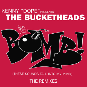 THE BUCKETHEADS - The Bomb! (These Sounds Fall Into My Mind)