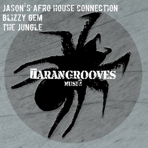 JASON'S AFRO HOUSE CONNECTION/BLIZZY GEM - The Jungle