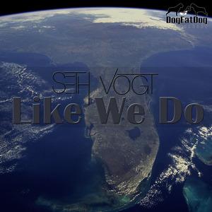 SETH VOGT - Like We Do