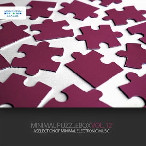 VARIOUS - Minimal Puzzlebox Vol 12: A Selection Of Minimal Electronic Music