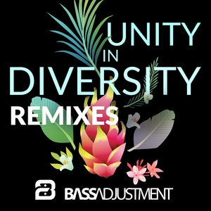 BASS ADJUSTMENT - Unity In Diversity (All In Together Now) (Remixes) (feat J-BiRD The Straybird)