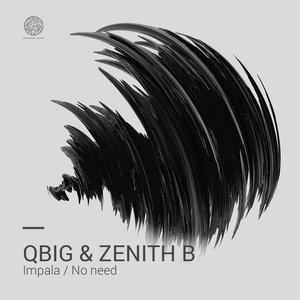 QBIG & ZENITH B - Impala