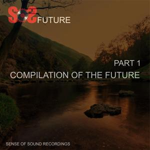 ANARKI/STEREOCOOL/SHOHRUX/GERMAN RUDENKO/MARISHATS4/FUNKY HOUSE TRIBE/ANGEL BLANCO/MC LOST TRIBE - Compilation Of The Future Part 1