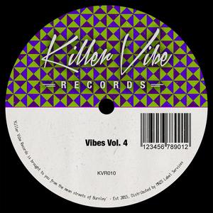 VARIOUS - Vibes Vol 4