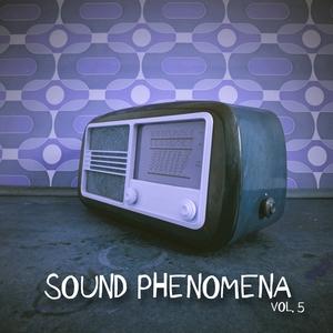 VARIOUS - Sound Phenomena Vol 5: Selection Of Tech House