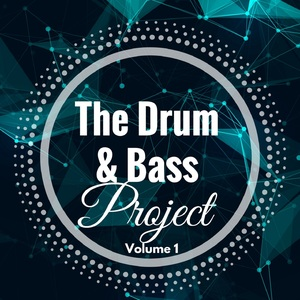 VARIOUS - The Drum & Bass Project/Volume 1