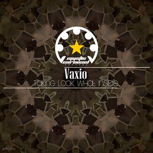 VAXIO - Taking Look What Inside