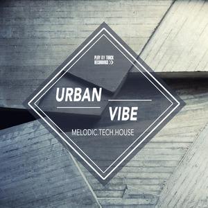 VARIOUS - Urban Vibe