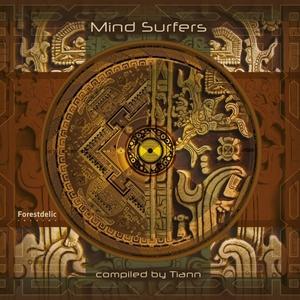 VARIOUS - Mind Surfers