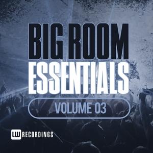 VARIOUS - Big Room Essentials Vol 03