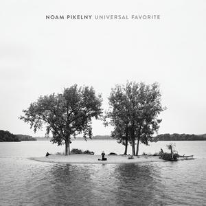 NOAM PIKELNY - Universal Favorite