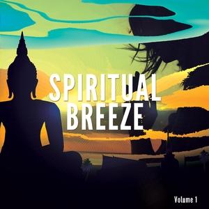 VARIOUS - Spiritual Breeze Vol 1: Meditation & Yoga Vibes