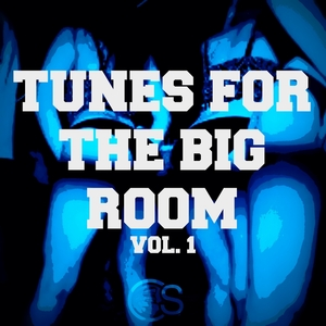 VARIOUS - Tunes For The Big Room Vol 1