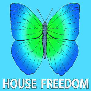 VARIOUS - House Whip