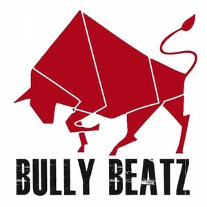 VARIOUS - Bully Beatz Compilation Part 2