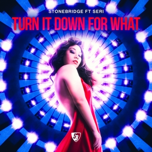 STONEBRIDGE feat SERI - Turn It Down For What