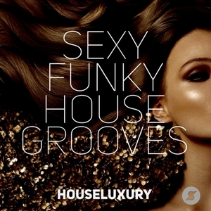 VARIOUS - Sexy Funky House Grooves