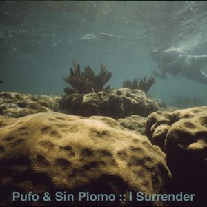 PUFO/SIN PLOMO - I Surrender