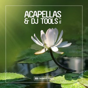 VARIOUS - Enormous Tunes - Acapellas & DJ Tools, Vol  2