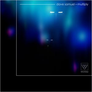 DAVE SAMUEL - Multiply