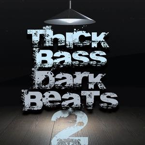 VARIOUS - Thick Bass Dark Beats (Volume 2)
