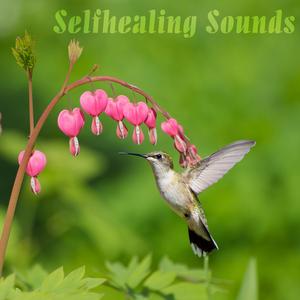 VARIOUS - Selfhealing Sounds