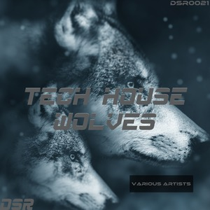 VARIOUS - Tech House Wolves