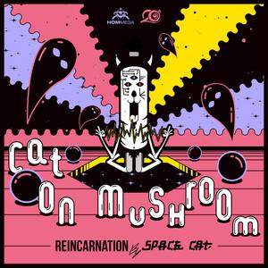 CAT ON MUSHROOM - Reincarnation