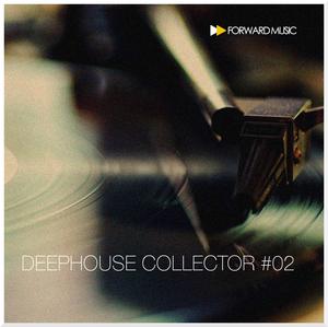 VARIOUS - Deephouse Collector #02