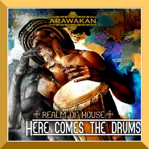REALM OF HOUSE - Here Comes The Drums