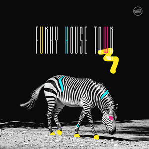 VARIOUS - Funky House Town Vol 1