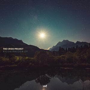 THE CRISIS PROJECT - Xylem/Phloem EP
