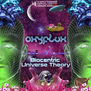 OXYFLUX - Biocentric Universe Theory