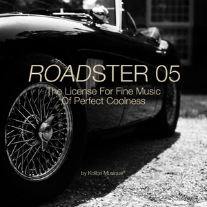 VARIOUS/KOLIBRI MUSIQUE - Roadster 05 - The License For Fine Music Of Perfect Coolness - Presented By Kolibri Musique
