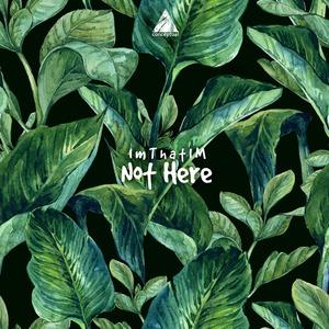 IMTHATIM - Not Here