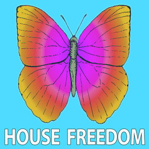 BUNNY HOUSE/ZNMK - Blank