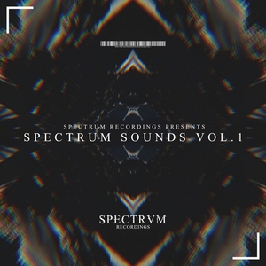 ALBERT & HEIN/NICK-V/RICKY SKY/NUNO FERNANDEZ/DEEJAY AC - Spectrum Sounds Vol 1