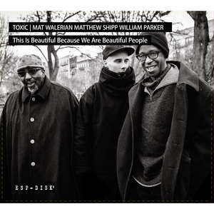 TOXIC/MATTHEW SHIPP/MAT WALERIAN/WILLIAM PARKER - This Is Beautiful Because We Are Beautiful People