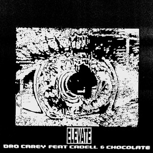 DRO CAREY - Elevate
