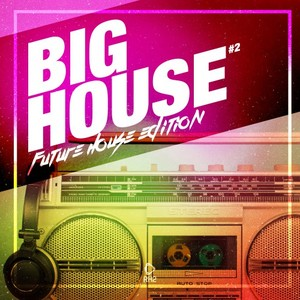 VARIOUS - Big House: Future House Edition Vol 2