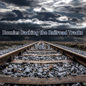 VARIOUS - Homies Backing The Railroad Tracks Vol 1