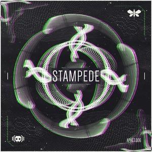 AUDIOFREQ - Stampede