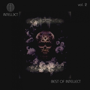 VARIOUS - BEST OF INTELLECT VOL 2
