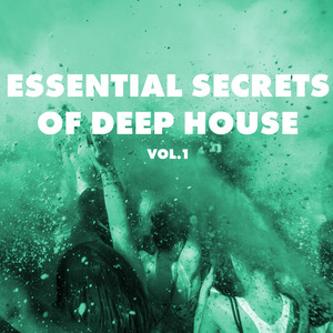 VARIOUS - Essential Secrets Of Deep House Vol 1