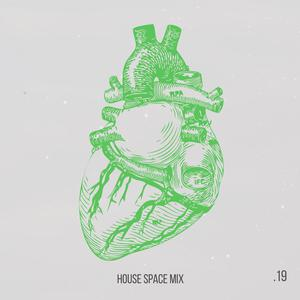 VARIOUS - House Space Mix - Vol 19