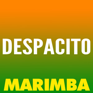 THE MARIMBA SQUAD - Despacito