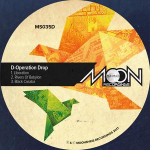 D-OPERATION DROP - Liberation EP