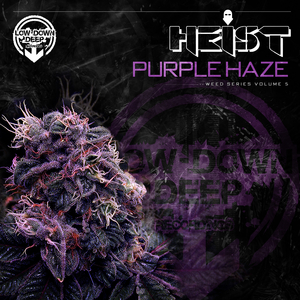 HEIST - Purple Haze